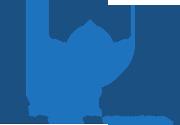 ICON und LOGO für die Internetseite hausSCHNELLverkaufen.de