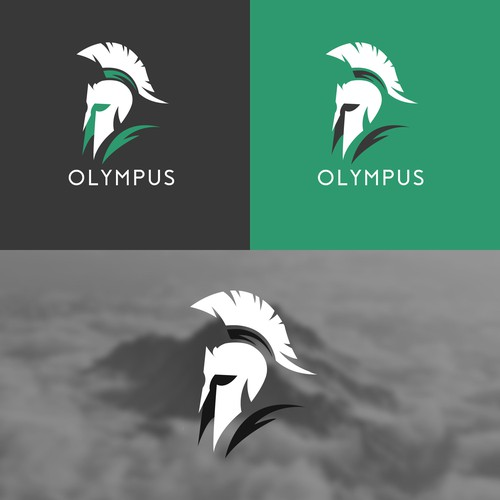 "Logo for ""OLYMPUS"" security"