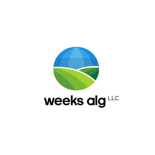 Weeks bold logo concept