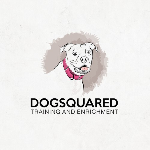 dogsquared training and enrichment