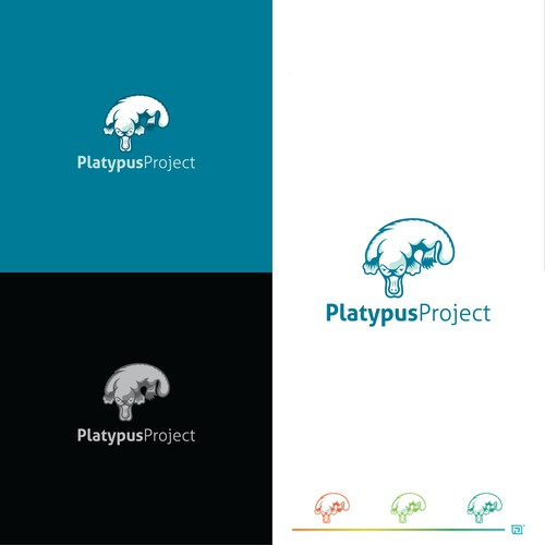 logo design for platypus project