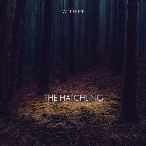 The hatchling album cover proposal