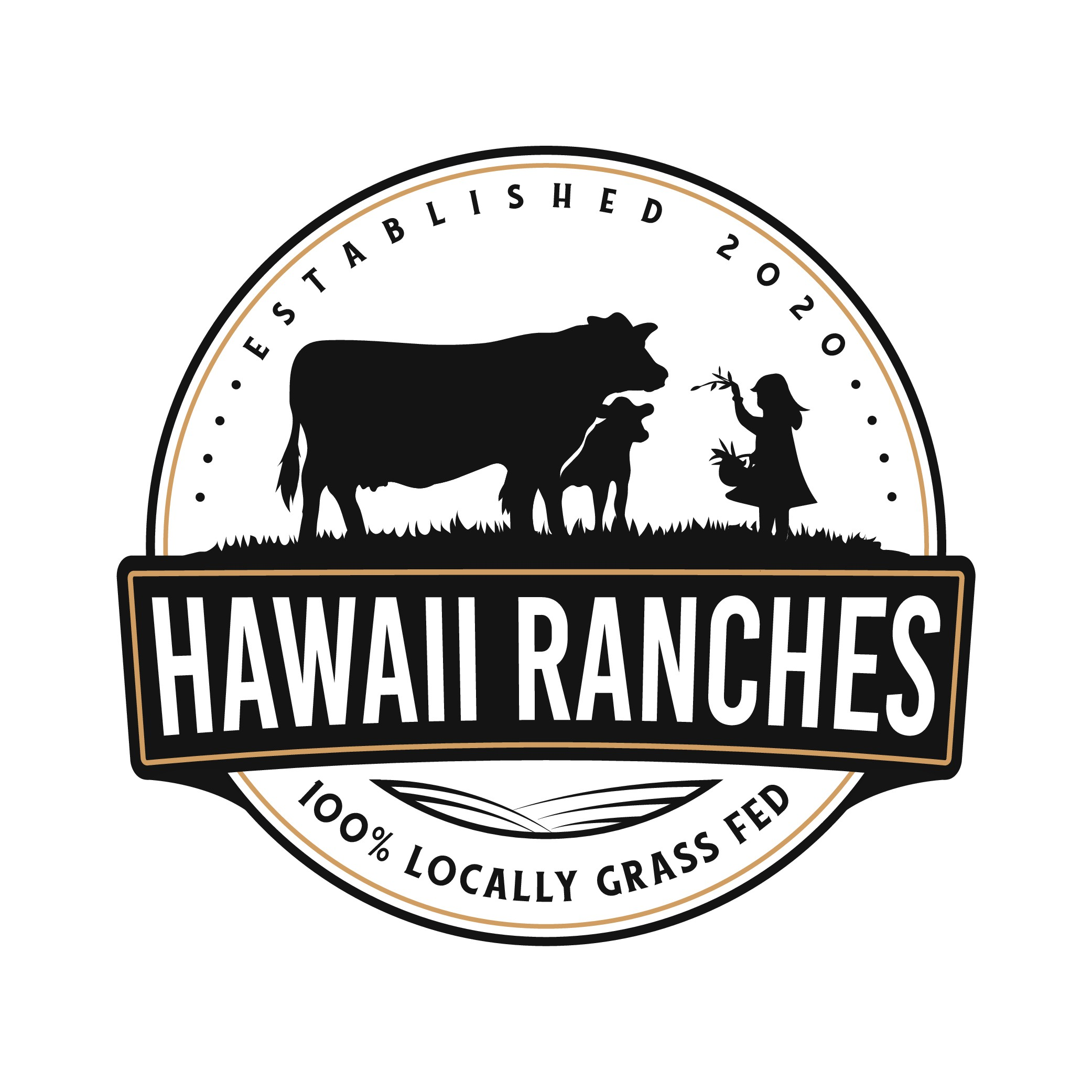 Hawaii Grass Fed Beef