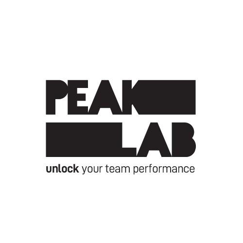 """Logo proposal 2 for """"Peak Lab"""""""
