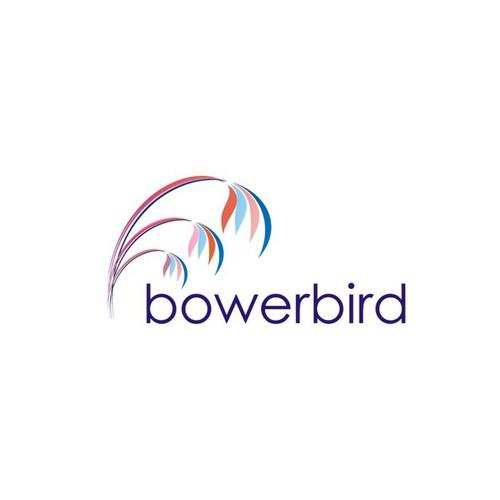 Help bowerbird create an effective bower!