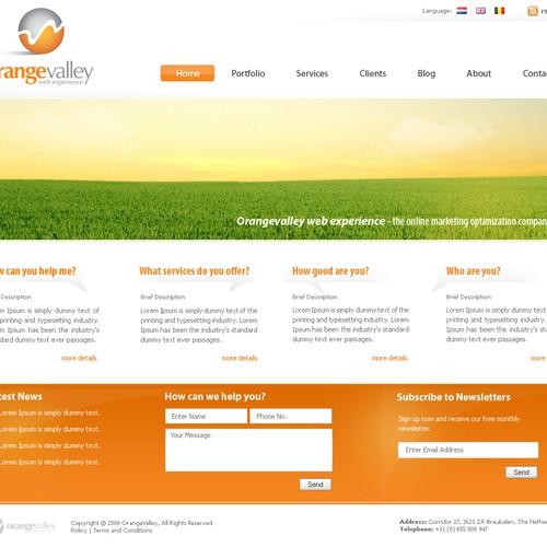 Website design - new online marketing company - Orangevalley.nl