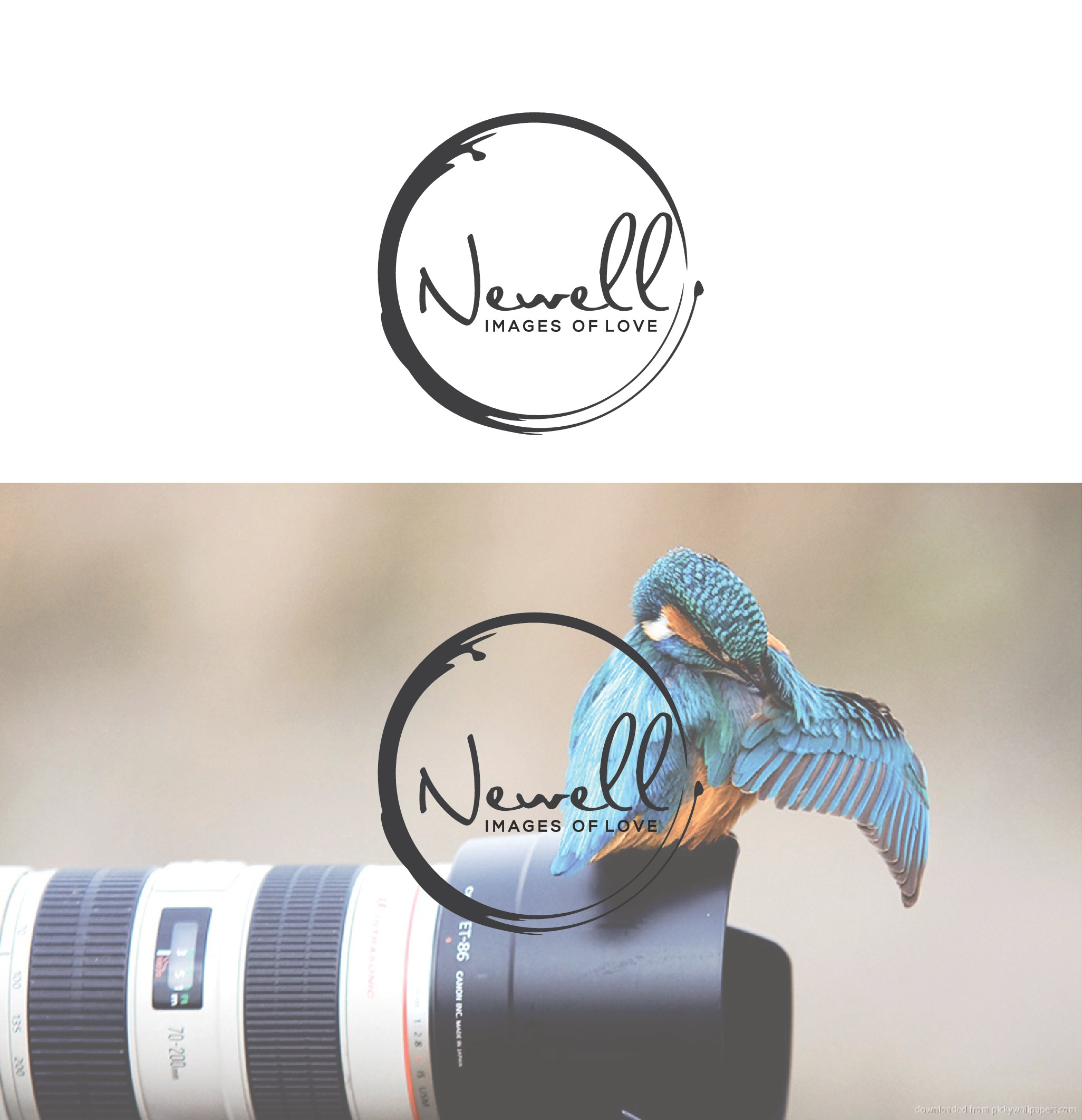 Design a sophisticated logo for Newell Images of Love