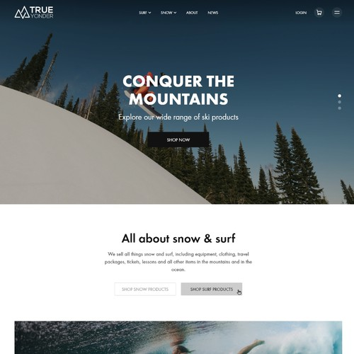Website design for the surf and snow marketplace