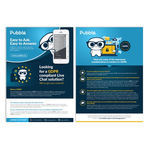 1 page flyer for pubble