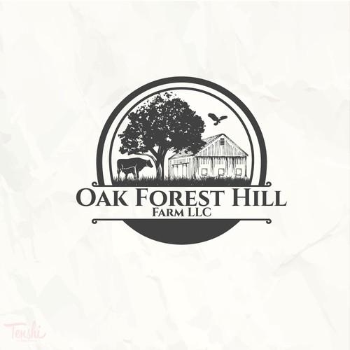 Oak Forest Hill