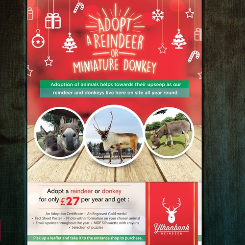 Poster for Reindeer Adoption Campaign