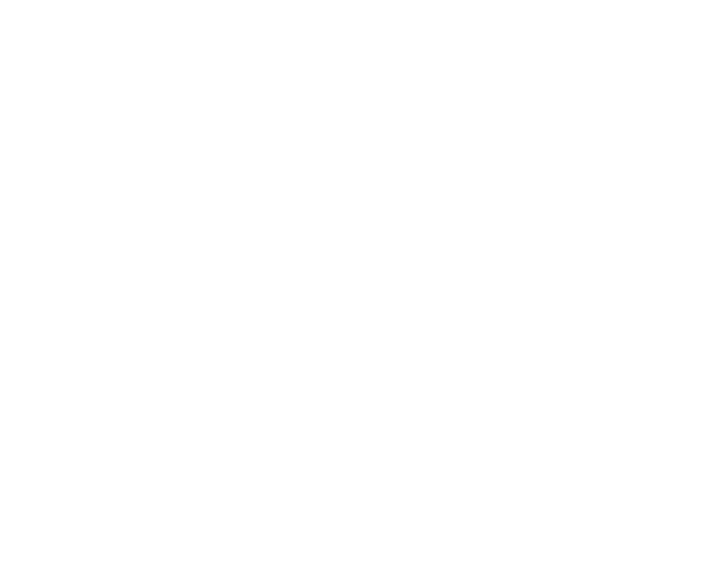 Create an obvious visual symbol for North Star Trail Ride merchandise