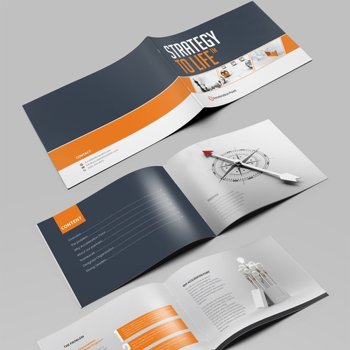 Brochure/Booklet Marketing Materials for Small Consulting Company