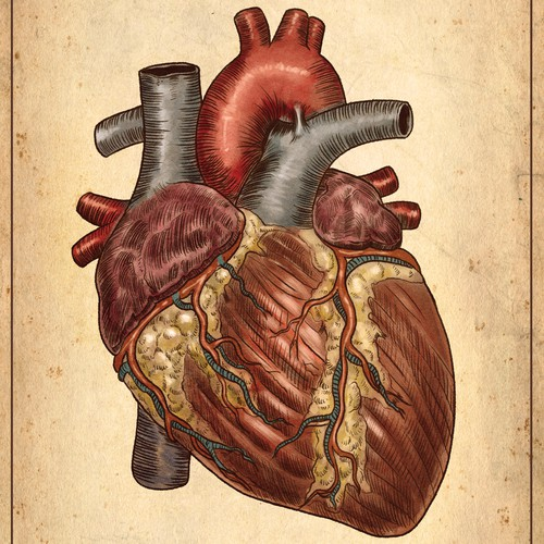 a premium medical Illustration