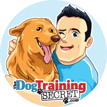 Facebook Branding Assets For Dog Training Business