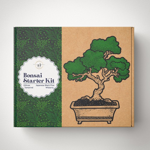 bonsai starter kit box