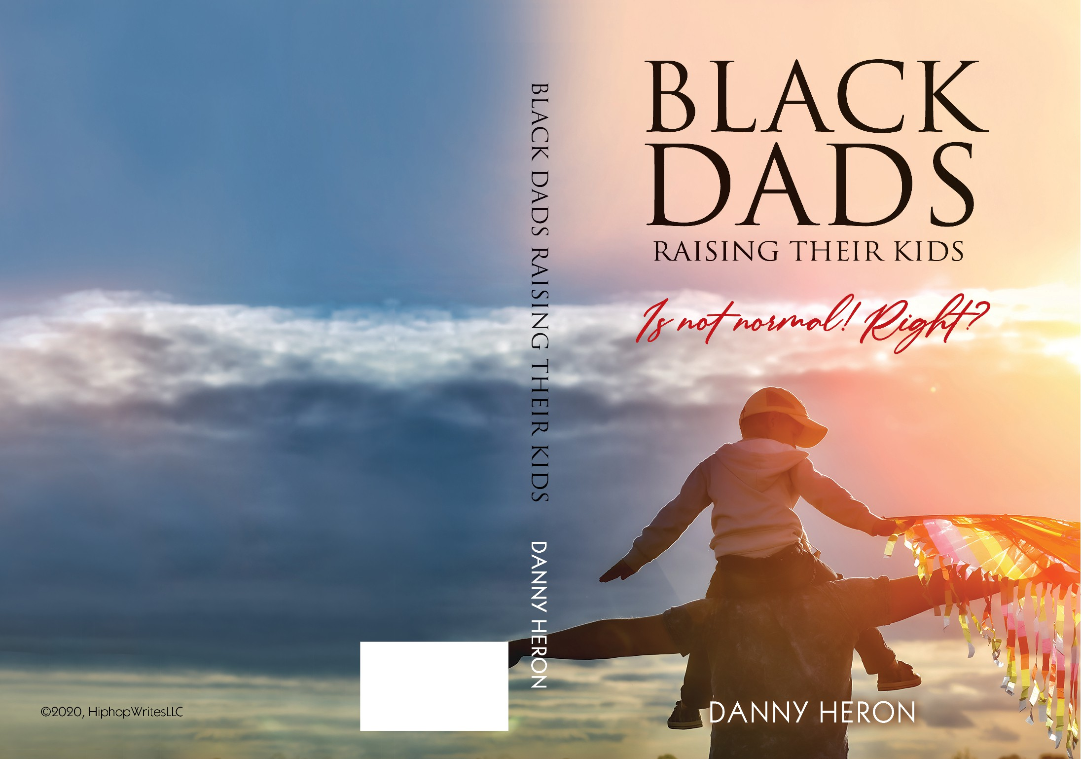 Book Cover that tells the story of a positive black father