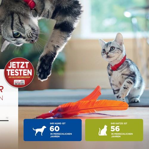 Hersteller für Hunde- und Katzennahrung braucht eine Landingpage für Gratis-testen Aktion