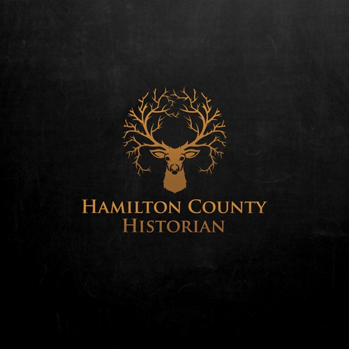 Logo concept for Historian