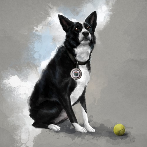 Stylized illustration of a border collie dog