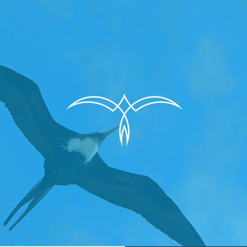 """Monoline Frigate Bird - Letter """"M"""""""