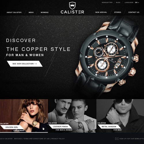 Website for Fashion Watch Company