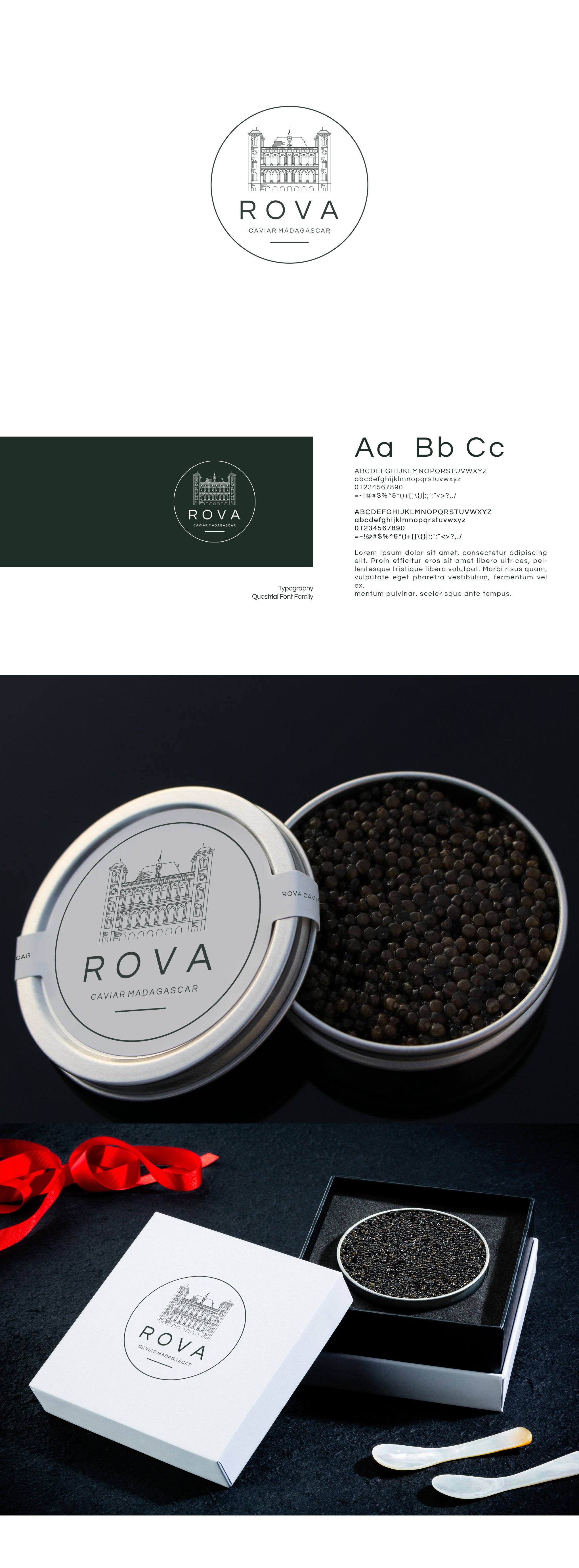 Create luxurious and modern brand identity for a sturgeon caviar brand