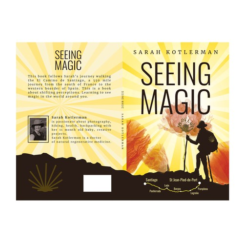 Artistic Book Cover for Seeing Magic