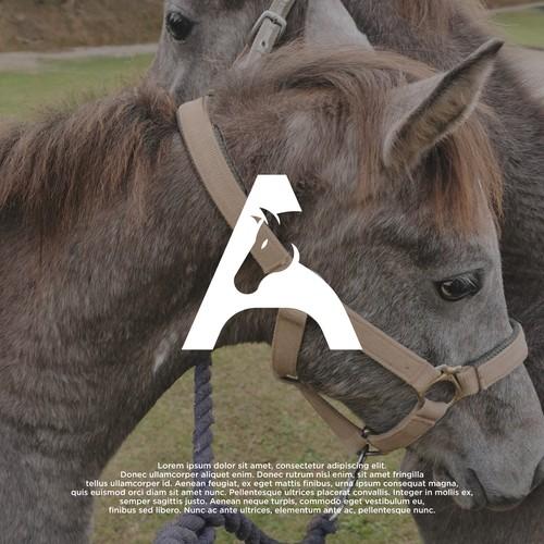Aqir Arabians