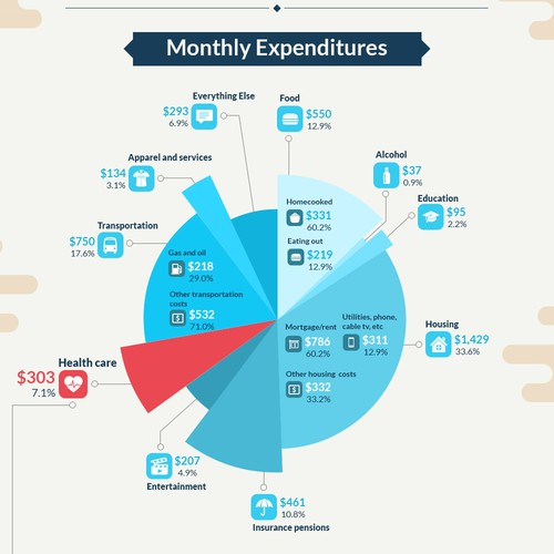 How do people spend their money? Create an eye-catching infographic for a Healthcare company