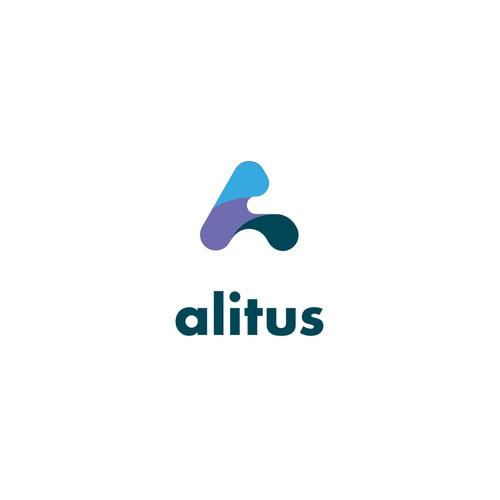 Logoconcept, alitus