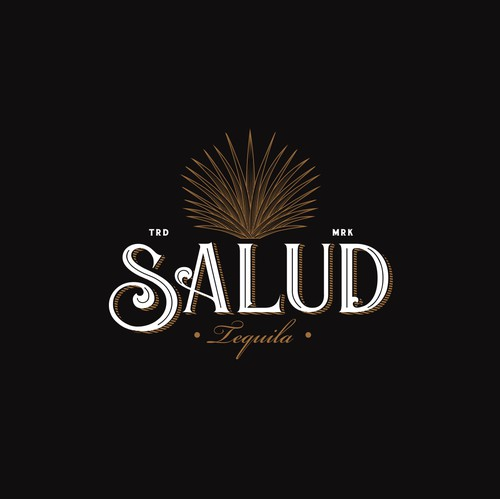 "Logo design concept for ""Salud Tequila"""