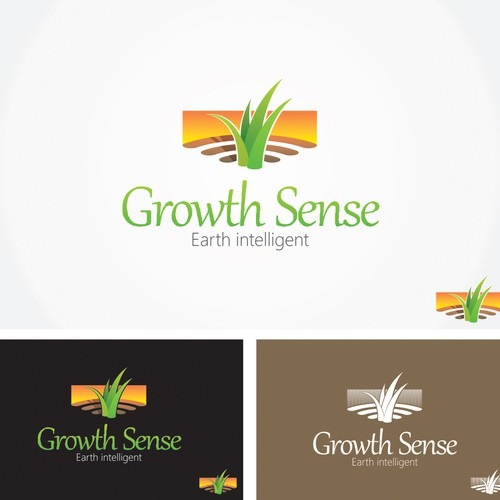 Growth Sense
