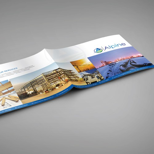 Professional Brochure Booklet for Alpine Inc!