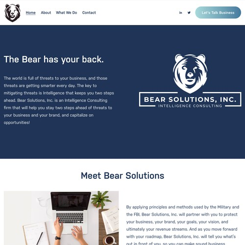 Bear Solutions Consulting Firm Design