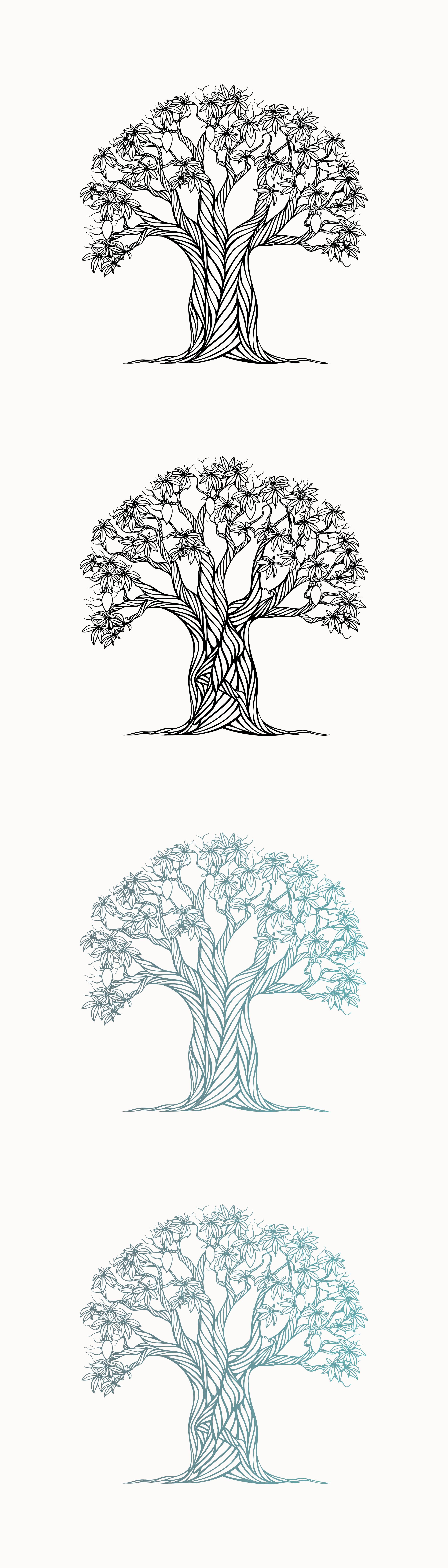 Baobab Tree's Gift illustration