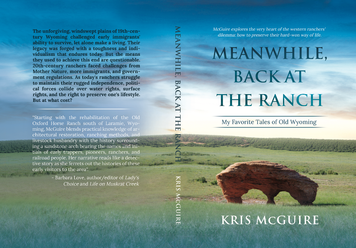 Meanwhile, Back at the Ranch is a history book. I need my existing cover design to be professional