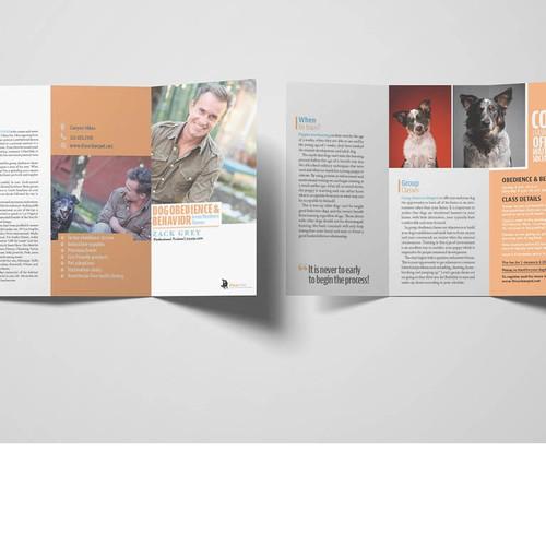 Veterinar brochure