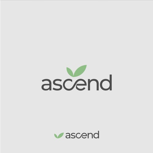 Ascend Logo Design  - the largest cannabis retail dispensary in the country