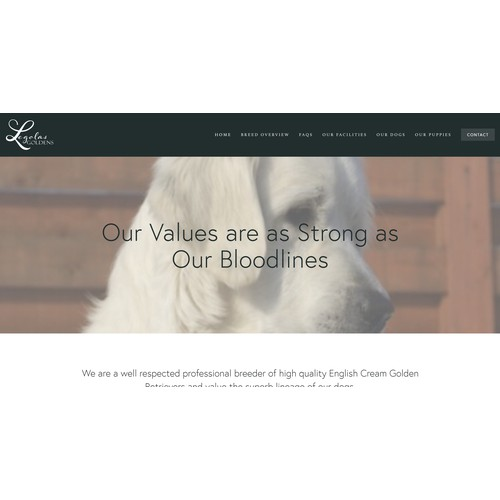 Squarespace Website Design for Legolas Goldens