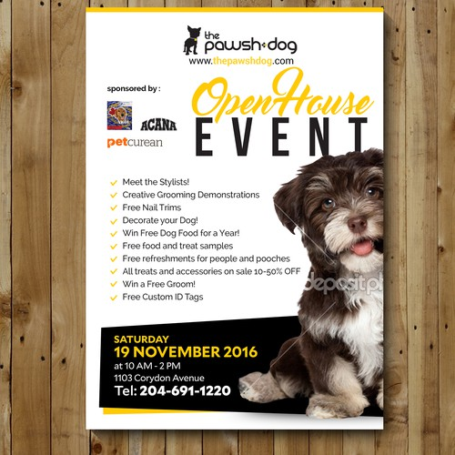 flyer for pawsh dog