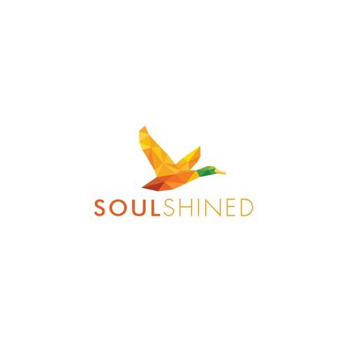 soulshined