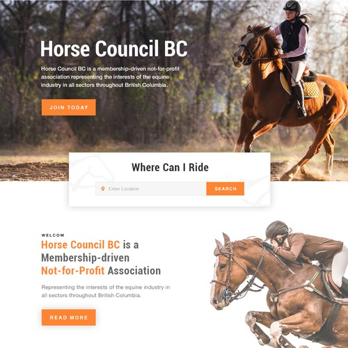 Horse Club Website Design
