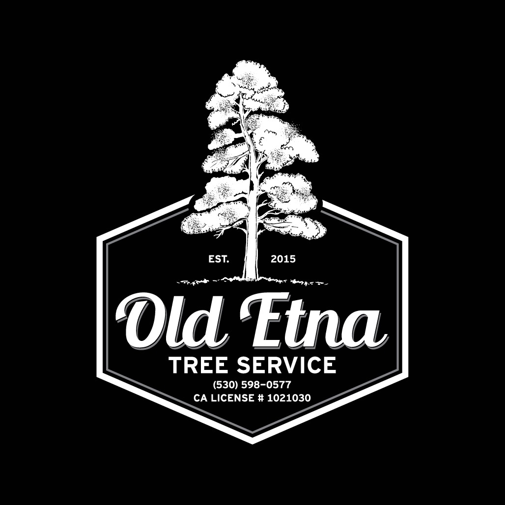 Powerful Logo - clean + memory association