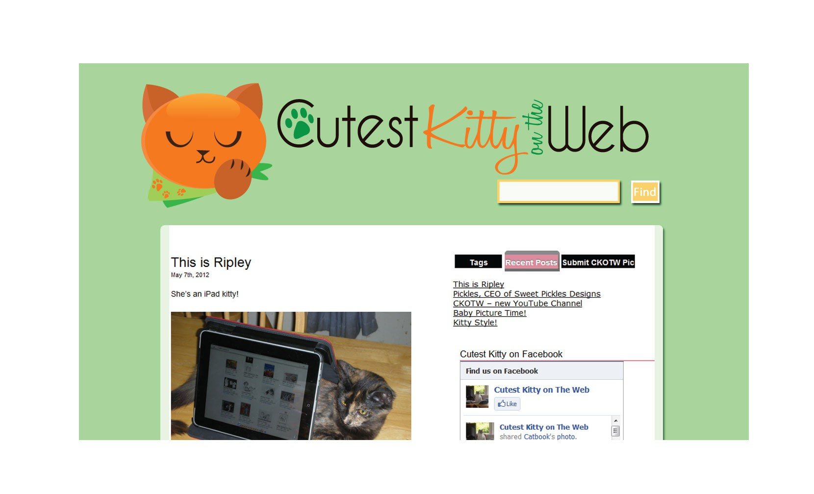 Create the next logo for Cutest Kitty on the Web / CKOTW