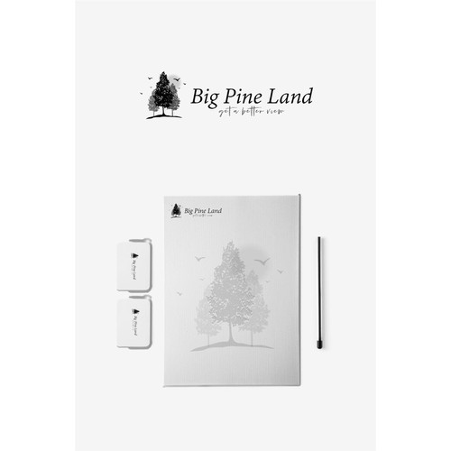 Big Pine Land real estate