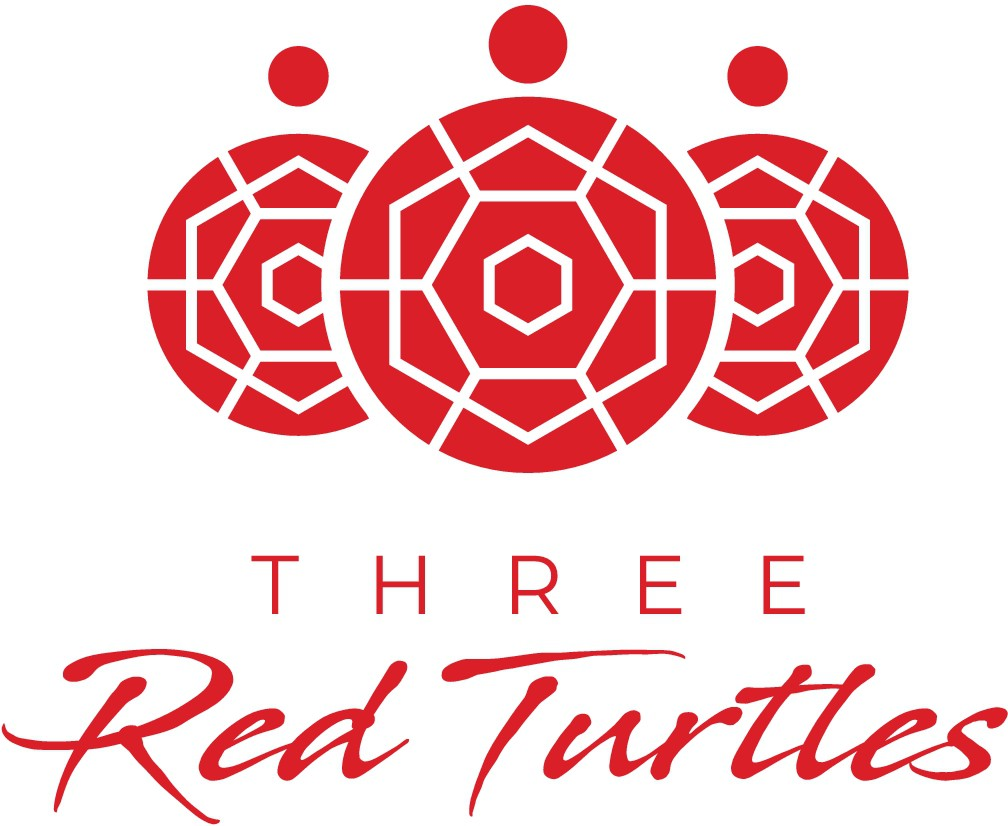Taking the Three Red Turtles (Ma & Pa shop) into the future