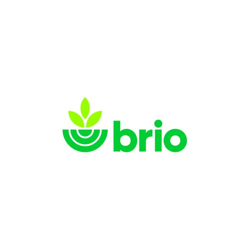 Logo for Brio a B2B Collaboration Software