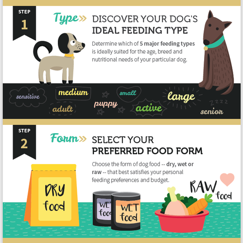 Cute infographic for dog owners