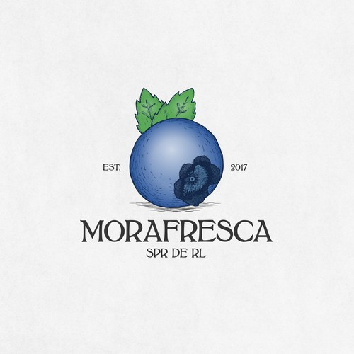 Blueberry retro logo for berry farm